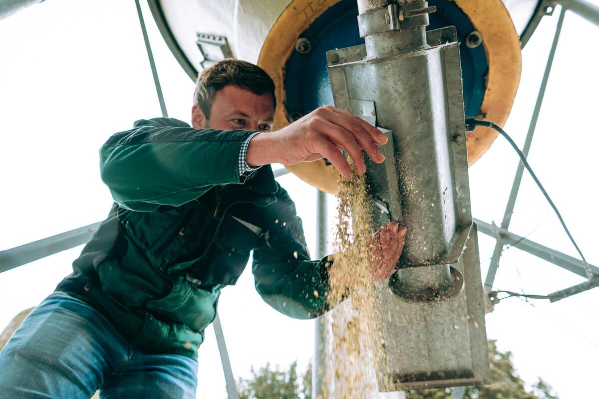 Auf dem Hof Vriesen legt man Wert auf regionale Erzeugung. Darum kommt das Futter auch aus der Region.