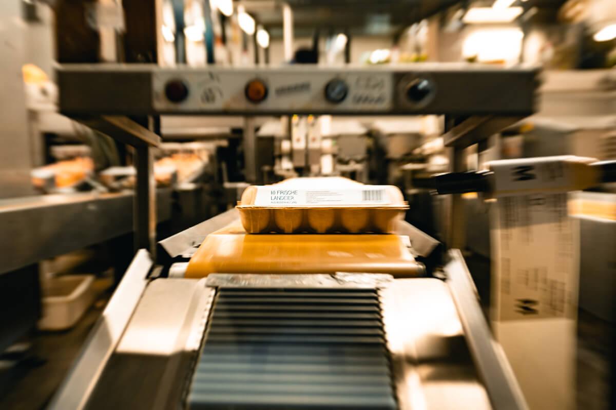 Die Eier werden je nach Haltungsform und Kunde in verschiedene Kartons sortiert.